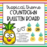 Pineapple Countdown Bulletin Board