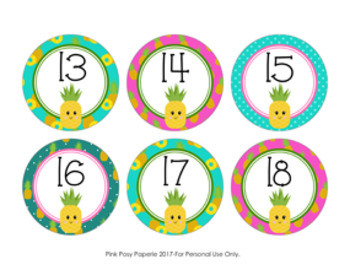 Pineapple Cubby Number Labels 1-30
