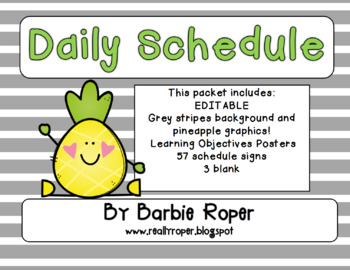 Pineapple Daily Schedule *Editable*
