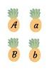 Pineapple Display Pack