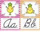 Pineapple Manuscript + Cursive Classroom Alphabet {Editable}