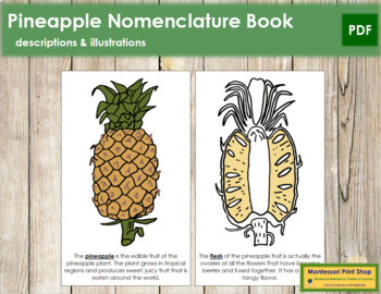 Pineapple Nomenclature Book