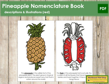 Pineapple Nomenclature Book - Red