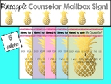 Pineapple School Counseling Mailbox Cover