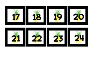 Pineapple Student Numbers to organize cubbies, folders, etc. (Tropical Theme)