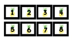 Pineapple Student Numbers to organize cubbies, folders, et