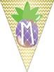 Pineapple Theme Classroom Math Banner