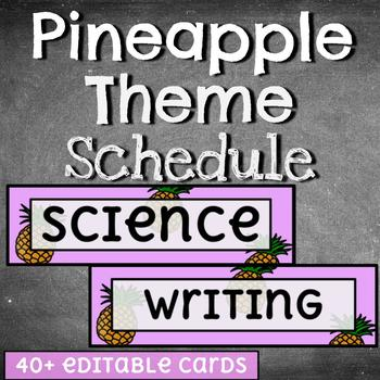 Daily Schedule Cards /// 40+ Editable /// PINEAPPLE