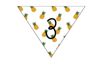 Pineapple Theme Number 1-30 Bunting