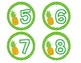 Pineapple Theme Student Numbers