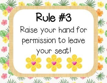 Pineapple Theme Whole Brain Rules
