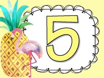 Pineapple Themed AR book club
