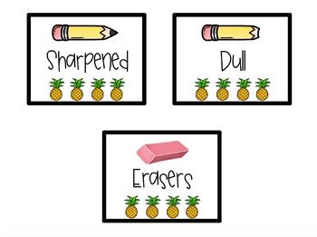Pineapple Themed Classroom Decor Pack (BLACK)