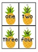 Pineapple Themed Count and Link Cards