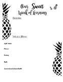 Pineapple Themed Newsletter Template