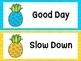 Pineapple/Tropical Behavior Clip Chart