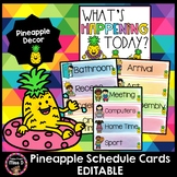 Pineapple Visual Timetable/Schedule Cards EDITABLE