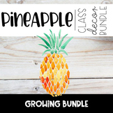 Pineapple Watercolor Black and White Themed Classroom Deco