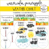 Pineapple Weather Chart (3 Organizing Signs & 10 Weather Buttons)