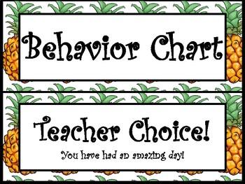 Pineapple and Flamingo Behavior Chart