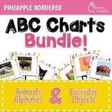 Alphabet Posters BUNDLE for Pineapples Classroom Decor