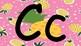 Pineapples Decor letters