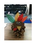 Pinecone Turkey