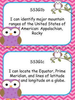 Pink Chevron Owl-Themed 3rd grade Georgia SS I Can Statement