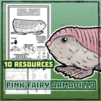 Pink Fairy Armadillo -- 10 Resources -- Coloring Pages, Re