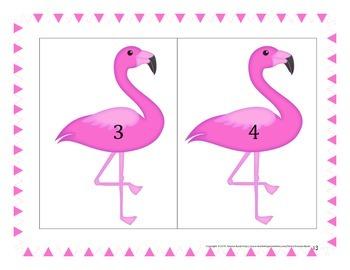 Pink Flamingo Races Math Game Probability Fractions Decimal Percent Grades 3 4 5