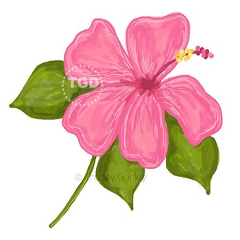 Pink Hibiscus Illustration, Hibiscus clip art Printable Tracey Gurley Designs