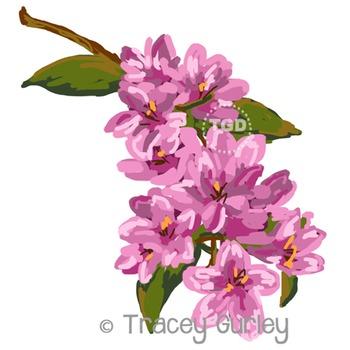 Pink Jasmine - jasmine clip art Printable Tracey Gurley Designs