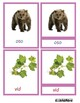 Pink Series Montessori Color Script Reading 3 Part Cards in Spanish