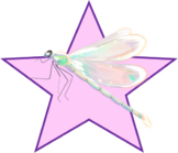 Pink Translucent Dragonfly Star (png)