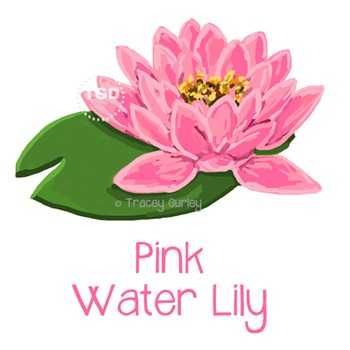 Pink Water Lily, water lily clip art, water lily Printable Tracey Gurley Designs