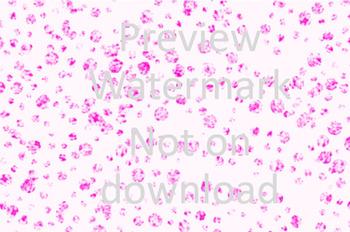 Pink circles digital background Image