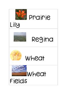 Pioneer Word Cards
