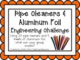 Pipe Cleaners & Foil: Engineering Challenge Project ~ Great STEM Activity!