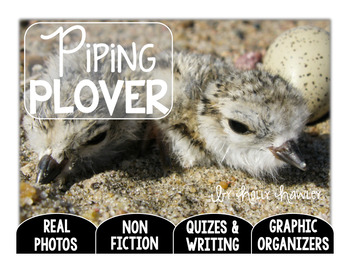 Piping Plover-A Research Project