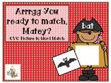 Pirate CVC Word Matching