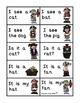 Pirate Reading Party Board Game (CVC Words and Sight Word Sentences)