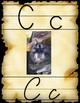 Pirate Print and Cursive Alphabet