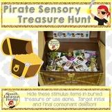 Pirate Sensory Treasure Hunt: Phonology