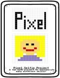 Pixel Selfie  Fraction Art, Perimeter, Area