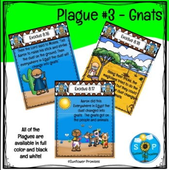 Plague #3 Gnats Scripture Cards