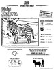 Plains Zebra -- 10 Resources -- Coloring Pages, Reading & Activities
