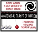 Planes of Motion Interactive Worksheet