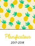 Planificateur ananas 2017-2018