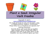 Plant A Seed Irregular Verb FREEBIE