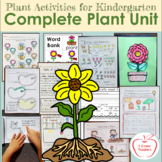 Plant Activities for Kindergarten / Complete Unit for Every Subject